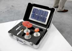 Carsten Höller – Mushroom Suitcase, 2008 // PMG-SIPA